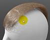hair_guide